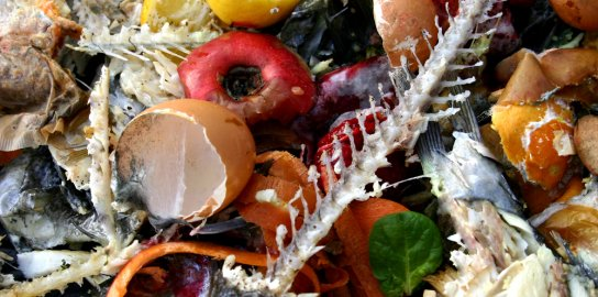 18 Little-Known Facts That Will Motivate You to Cut Back on Food Waste on Ecocentric Blog | Food, Water and Energy Issues